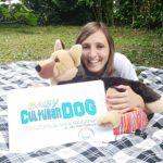 ABC Dog Corsi per bambini