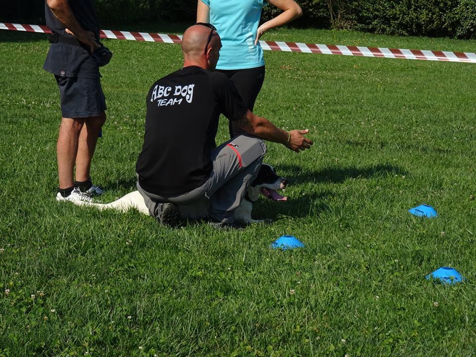 ABC Dog Team Monza Ricerca olfattiva 6