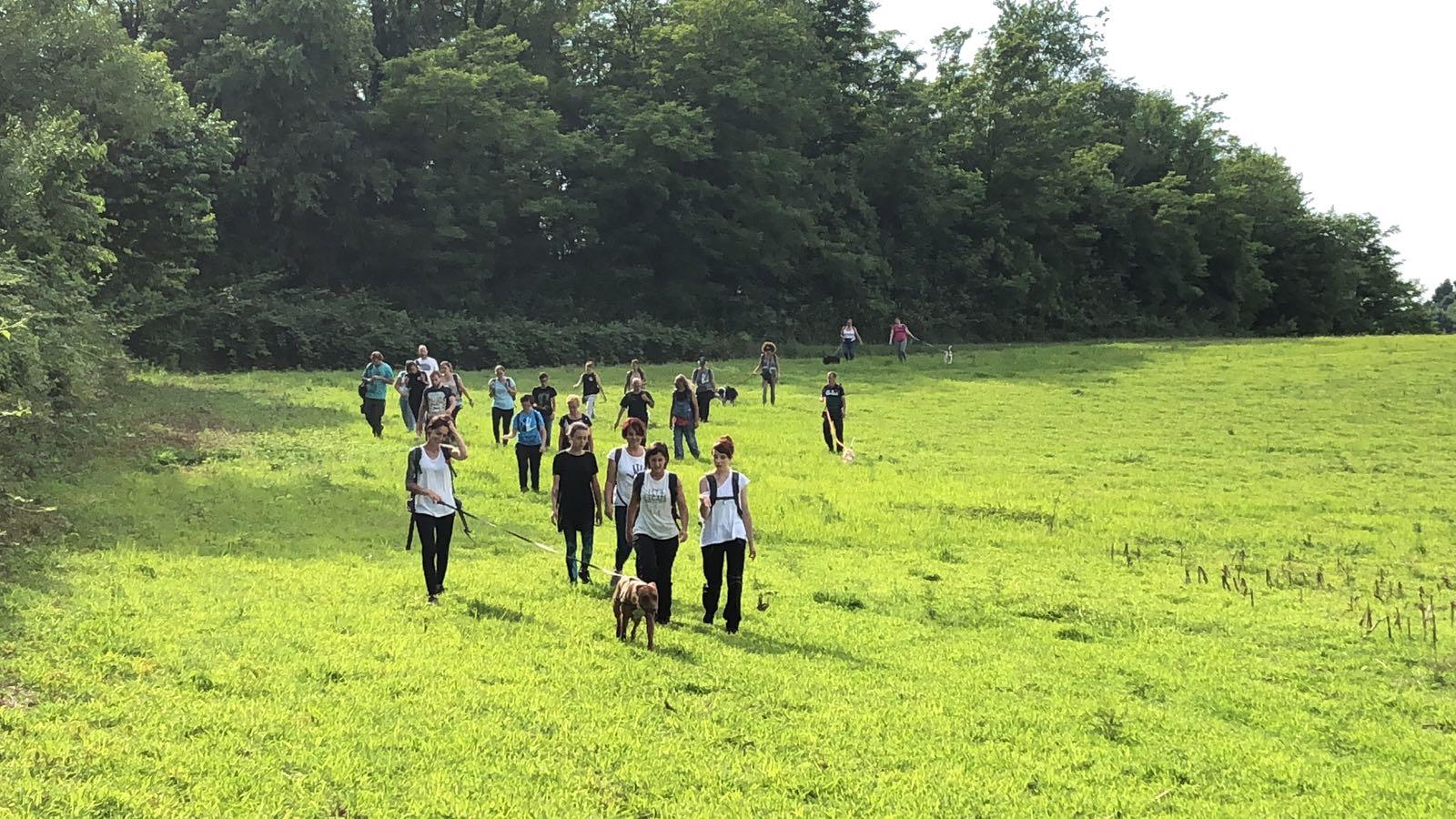 ABC Dog Team Monza passeggiate didattiche con cani Parco di Monza