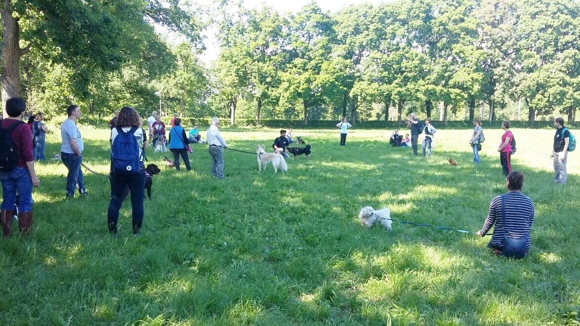ABC Dog Team Monza passeggiate didattiche con cani