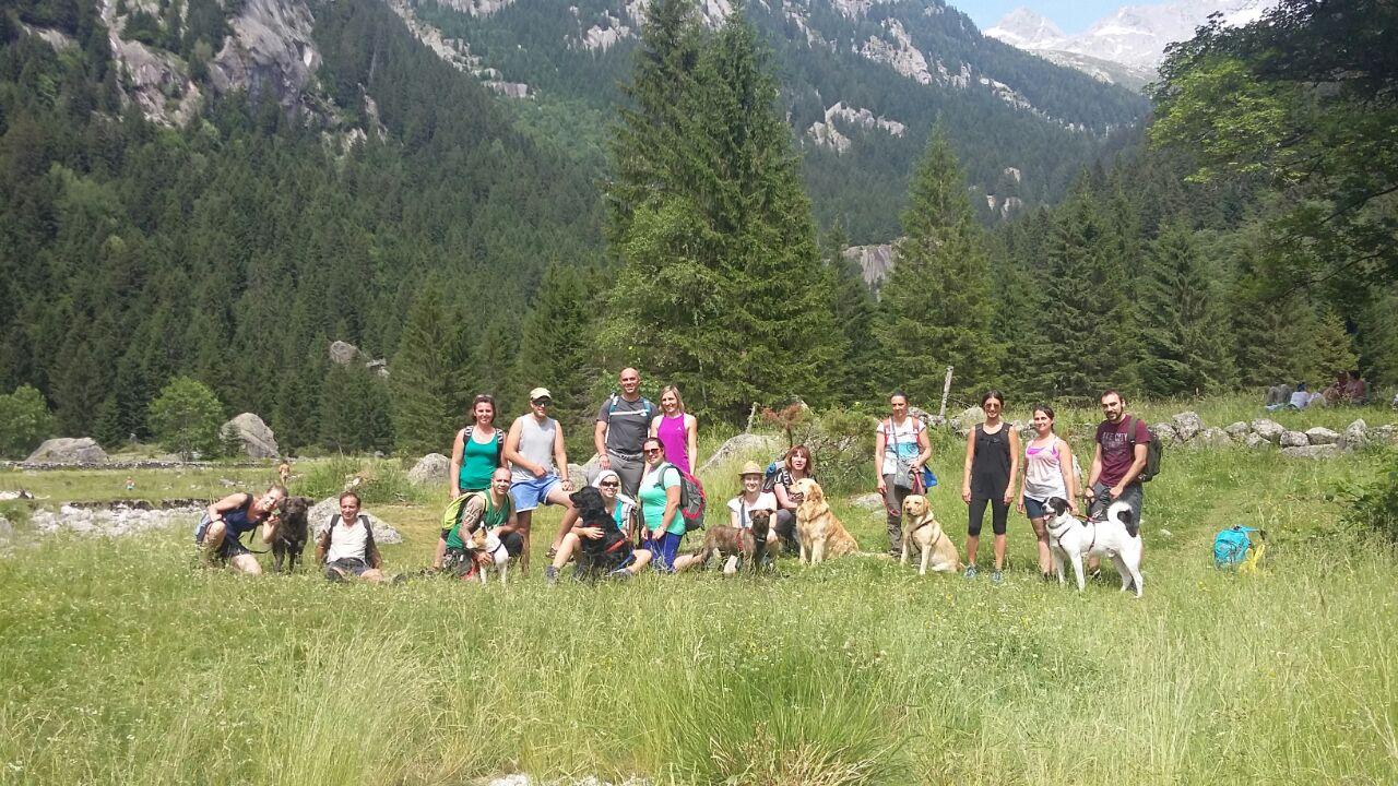 Gite con cani in montagna ABC Dog