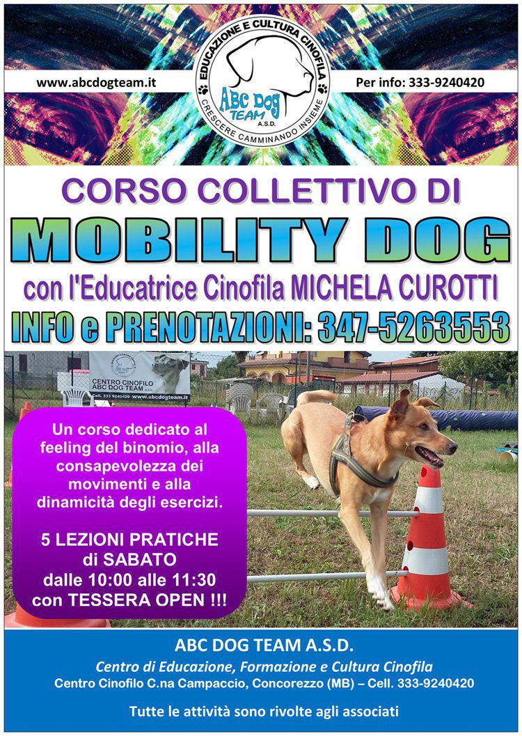 ABC DOG mobility dog 2017