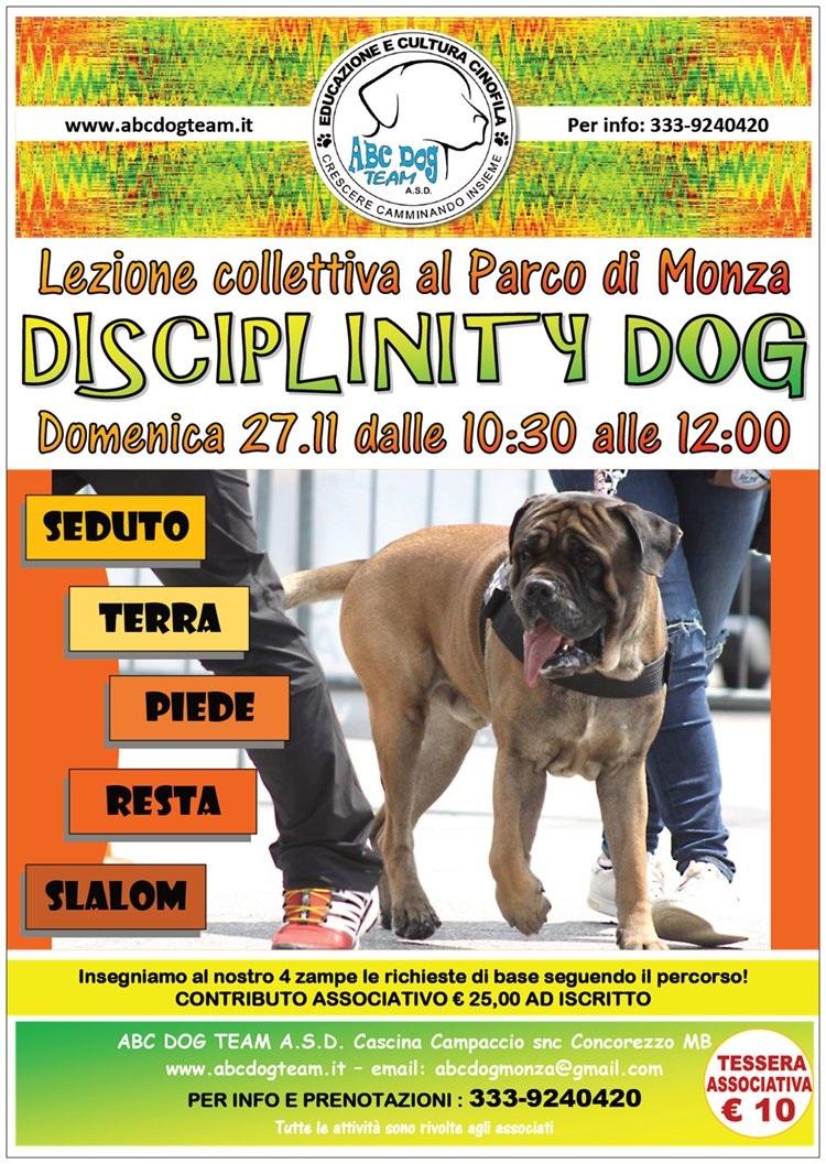 ABC DOG DISCIPLINITY DOG novembre 2016