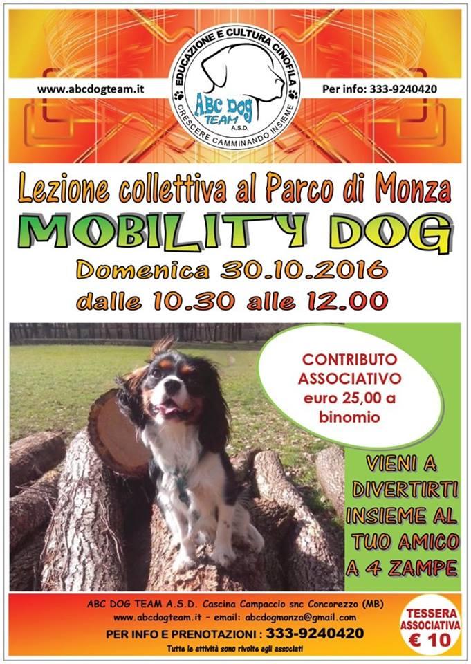 ABC DOG mobility dog ottobre 2016