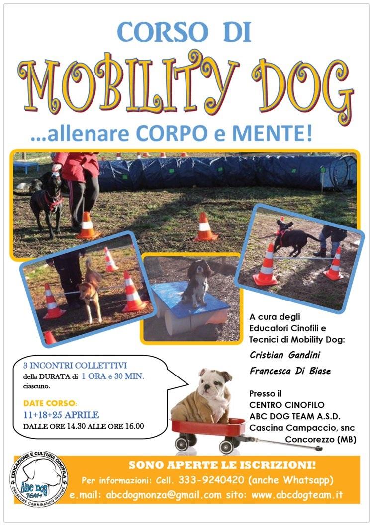 ABC Dog Mobility Dog aprile 2015