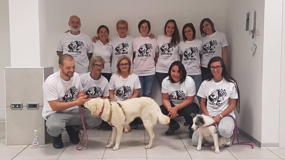 ABC Dog Monza corsi cinofilia