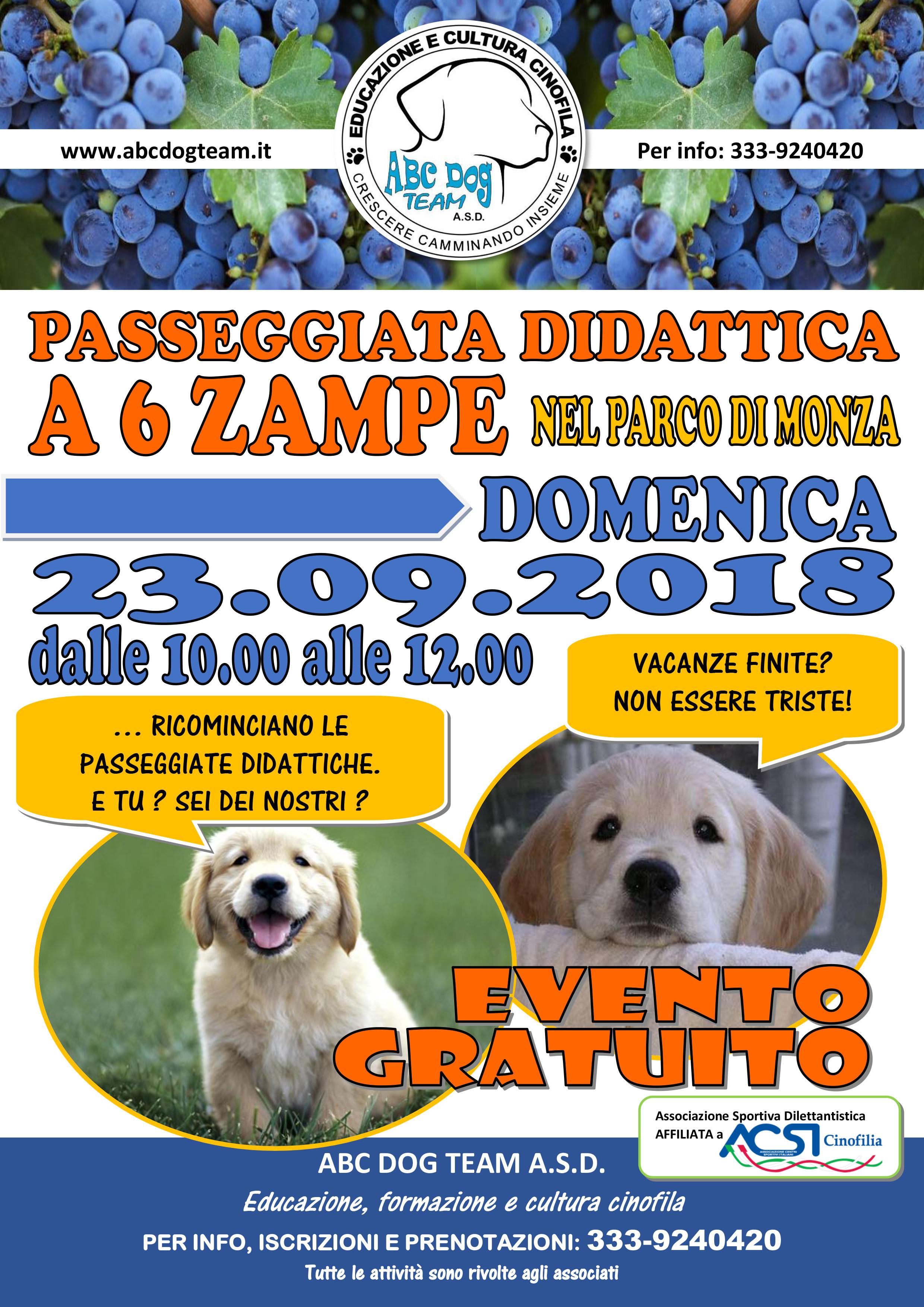 ABC Dog Passeggiata didattica