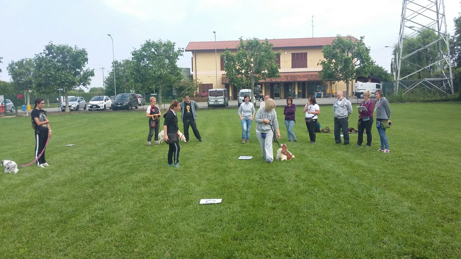 ABC Dog Team Monza corsi di formazione 10