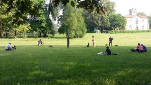 ABC Dog Team Monza corsi di formazione 11
