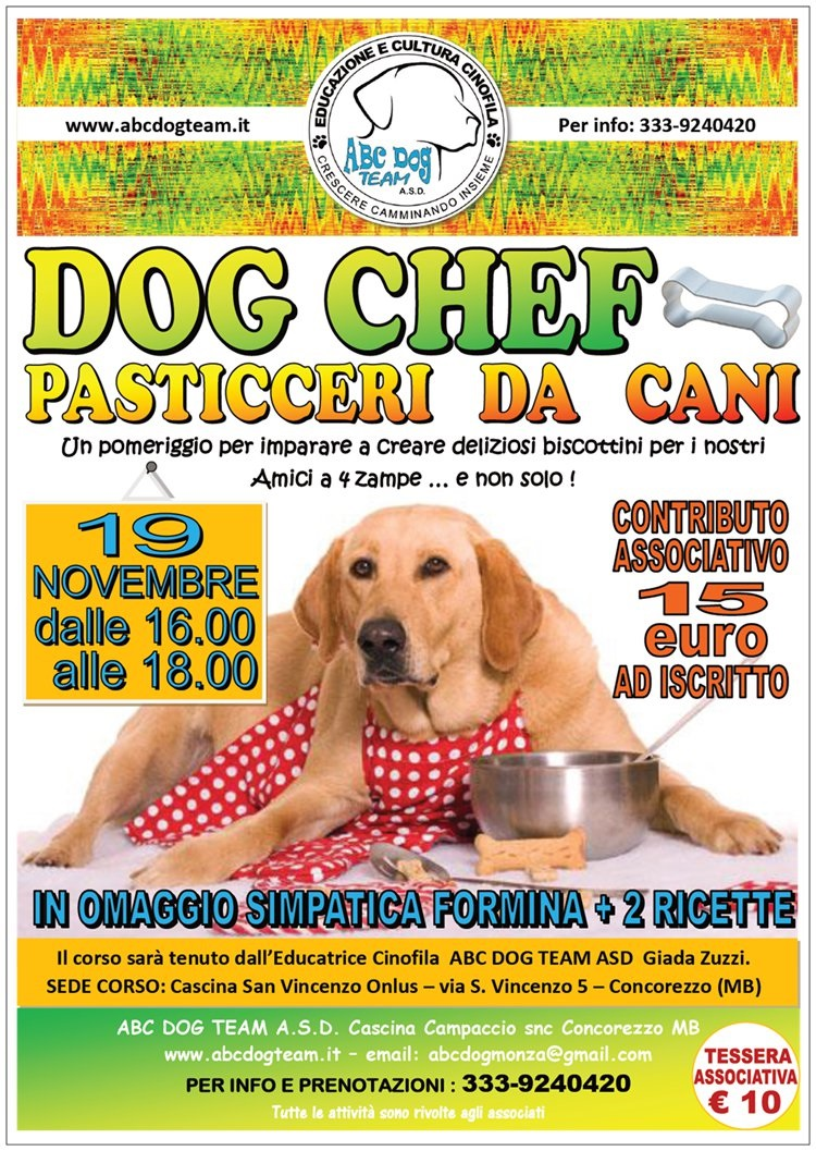 ABC Dog chef novembre 2016