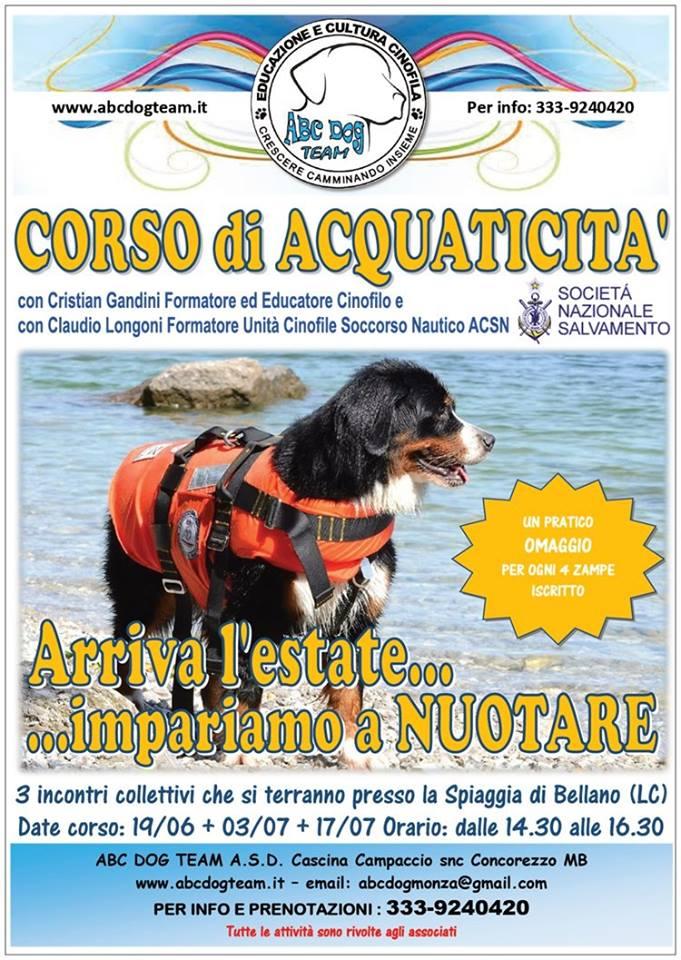 ABC Dog corso acquaticità giugno 2016