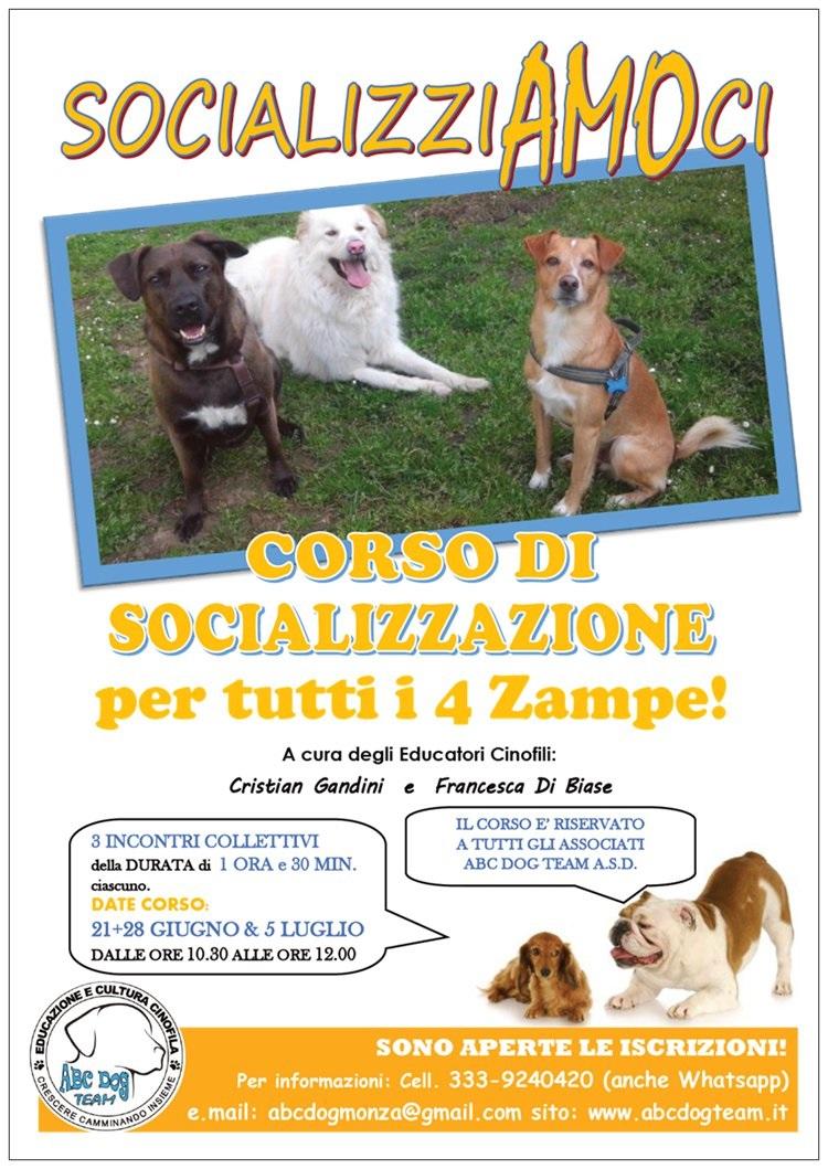 ABC Dog corso di socializzazione giugno 2015
