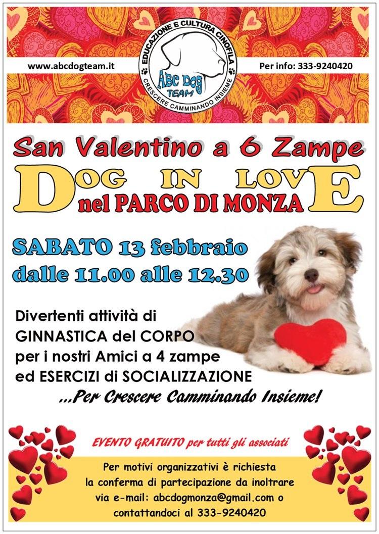 ABC Dog san valentino 6 zampe febbraio 2016