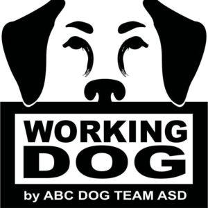 Progetto working dog ABC DOG TEAM ASD