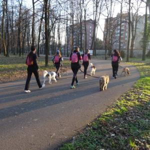 ABC DOG TEAM ASD WALKER WOMAN ACTIVITY MONZA