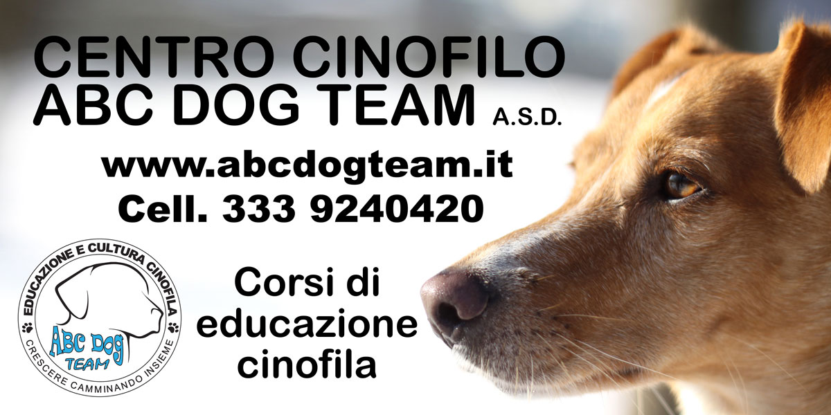 ABC-dog-team-monza